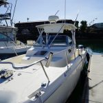 is a World Cat 266 SC Yacht For Sale in San Diego-7