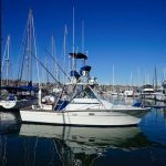 BARBARA ANNE is a Topaz 29 Express Fisherman Yacht For Sale in San Diego-1