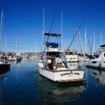 BARBARA ANNE is a Topaz 29 Express Fisherman Yacht For Sale in San Diego-3