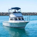 is a Blackman Billfisher 26 Yacht For Sale in San Diego-3