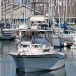 is a Grady-White Marlin 300 Yacht For Sale in Redondo Beach-2