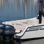 is a Grady-White Marlin 300 Yacht For Sale in Redondo Beach-4