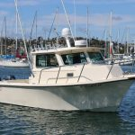is a Parker 2520 XLD Yacht For Sale in San Diego-0