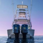 is a Albemarle 29 Express Yacht For Sale in San Diego-13