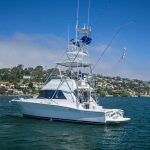 VINES & LINES is a Riviera 36 Flybridge Yacht For Sale in San Diego-2