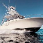 CABO UNO is a Cabo 41 Yacht For Sale in San Diego-7