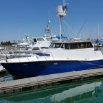 BABY BALUGA is a Pacifica 48 Sedan Sportfisher Yacht For Sale in San Diego-25