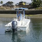 is a Edgewater 185CC Yacht For Sale in San Diego-3