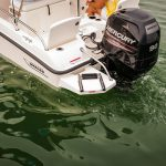 Boston Whaler 170 Dauntless Engine
