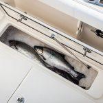 Boston Whaler 285 Conquest Pilothouse Fish Cooler