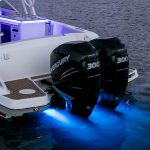 Boston Whaler 320 Vantage Engines