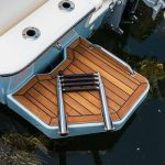 Boston Whaler 210 Montauk Step