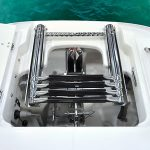 Boston Whaler 320 Vantage Ladder