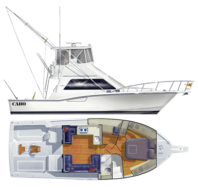 Cabo 35 Flybridge SPecificaltions