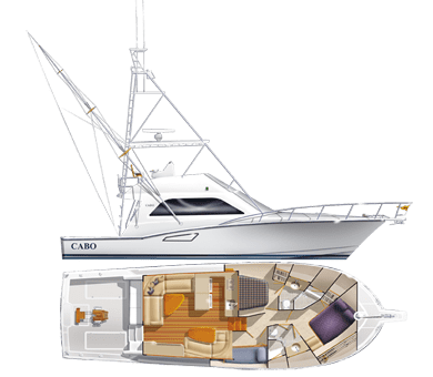 Cabo 47 Flybridge Specifications