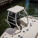 Boston Whaler 210 Dauntless Engine