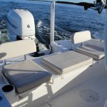 Boston Whaler 240 Dauntless Pro Engine
