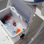 Boston Whaler 240 Dauntless Pro Cooler