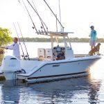 Pursuit C 238 Fishing