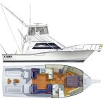 is a Cabo Flybridge Yacht For Sale in San Diego-2