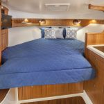 Pursuit OS 385 Berth