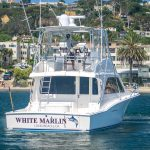 WHITE MARLIN is a Cabo Flybridge Yacht For Sale in San Diego-1