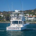 WHITE MARLIN is a Cabo Flybridge Yacht For Sale in San Diego-6
