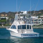 WHITE MARLIN is a Cabo Flybridge Yacht For Sale in San Diego-7